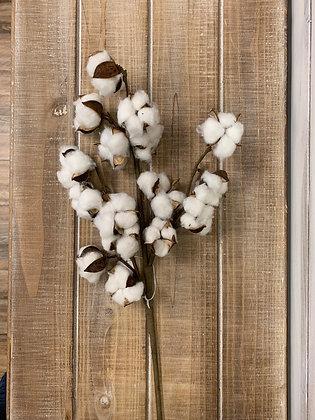 Large Cotton Spray