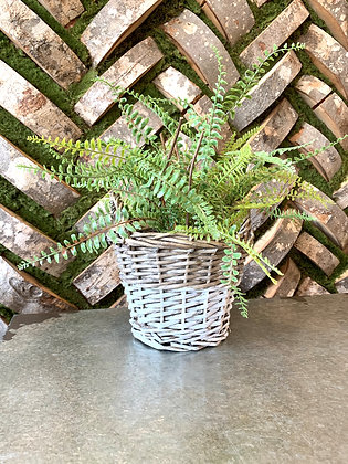 Natural & White Basket with Handles ~ small
