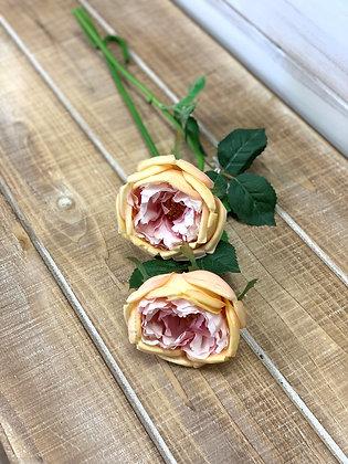 "20"" Garden Rose"