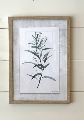 Seeded Eucalyptus Print Framed