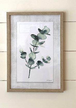 Eucalyptus Print Framed