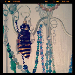 Bee, at home
