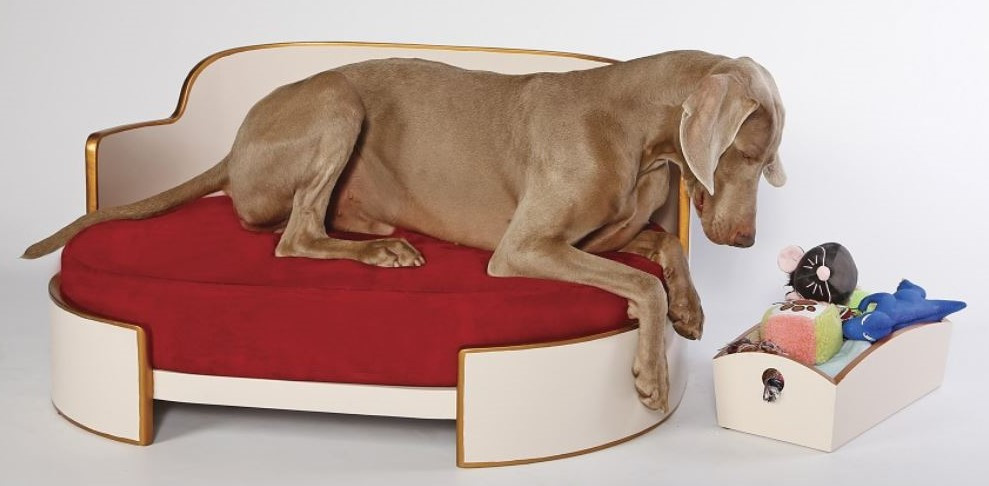 All-Round Dog Bed by KTZ
