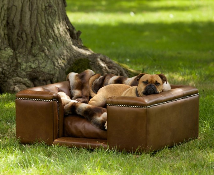 Sandringham Leather Dog Bed by Scott's of London