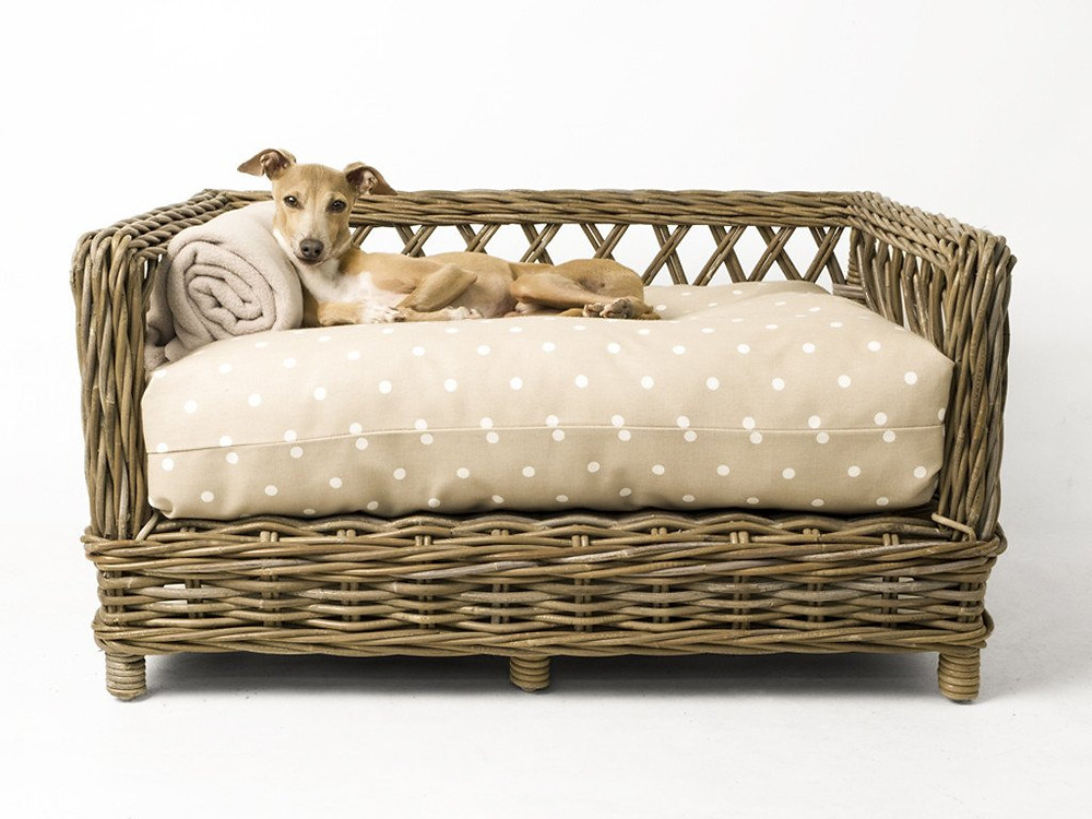 Raised Ratten Dog Bed by Charley Chau