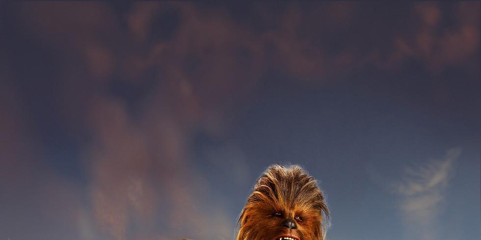 Freizeitwochenende | Han Solo