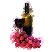 kisspng-red-wine-common-grape-vine-drawi