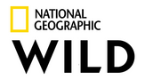 NGWild.png