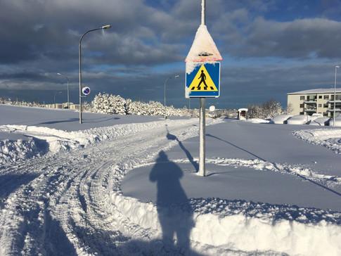 ParadÍsland III: A (Snowy) Visual Journal 📷