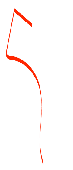 squiggle2.png