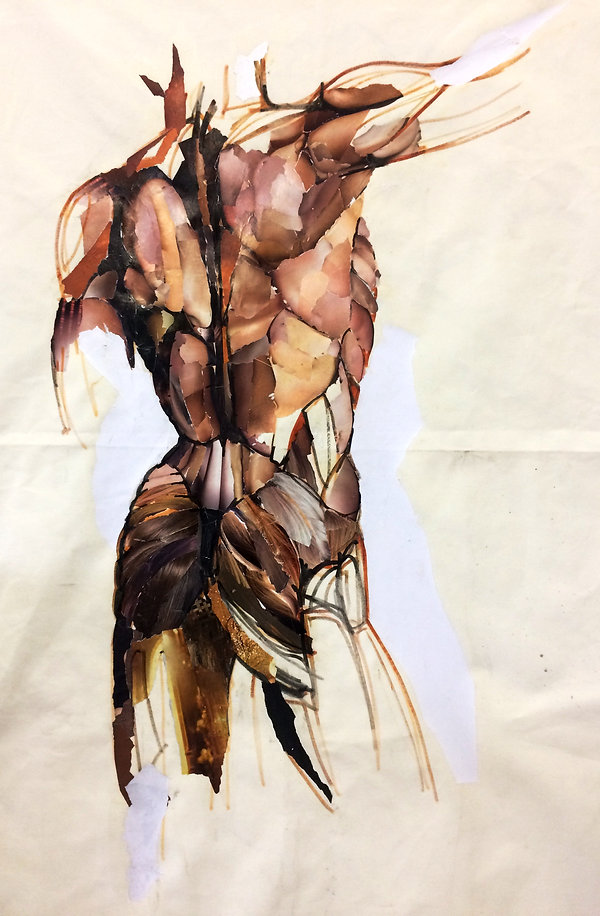 human body 2.jpg