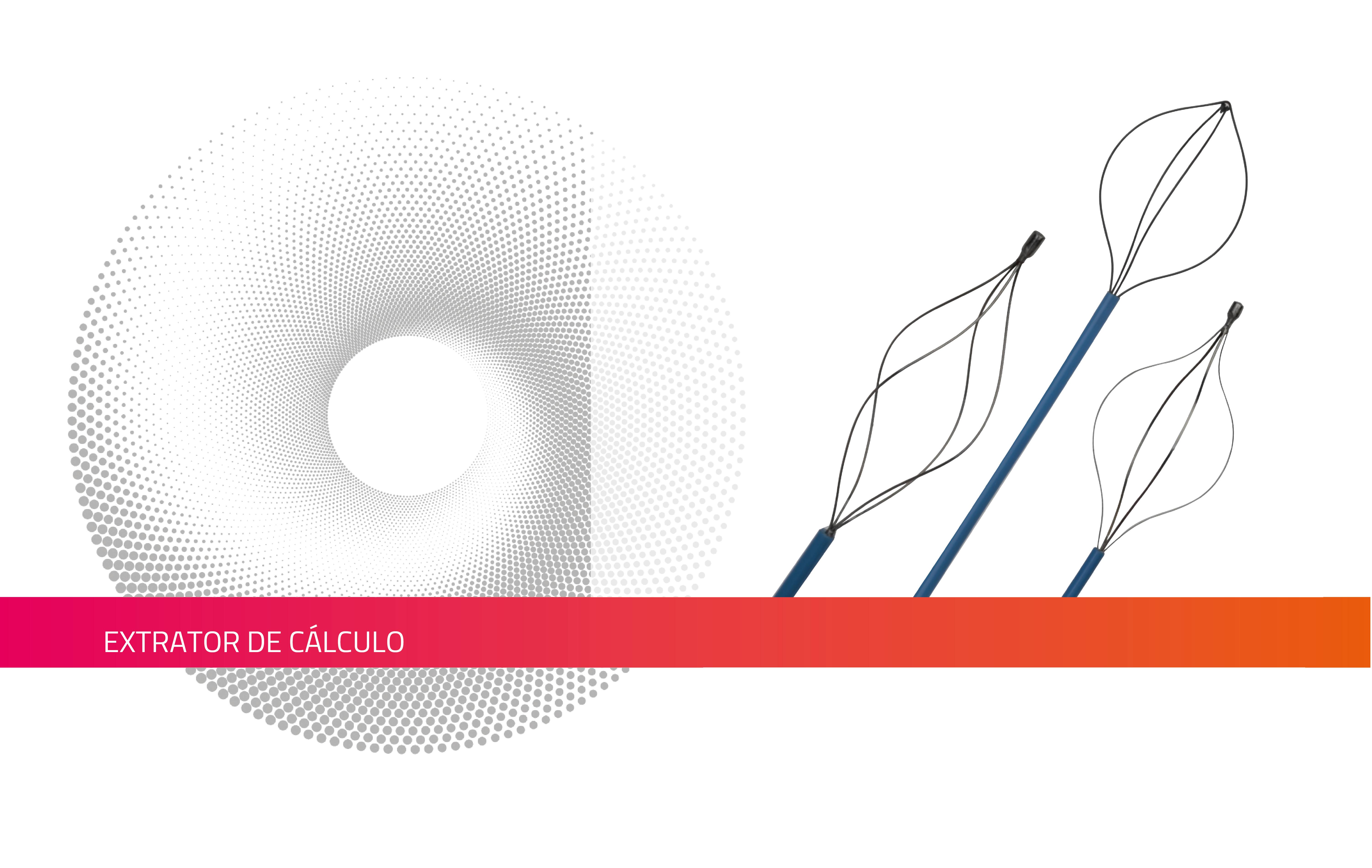 EXTRATOR  DE CÁLCULO
