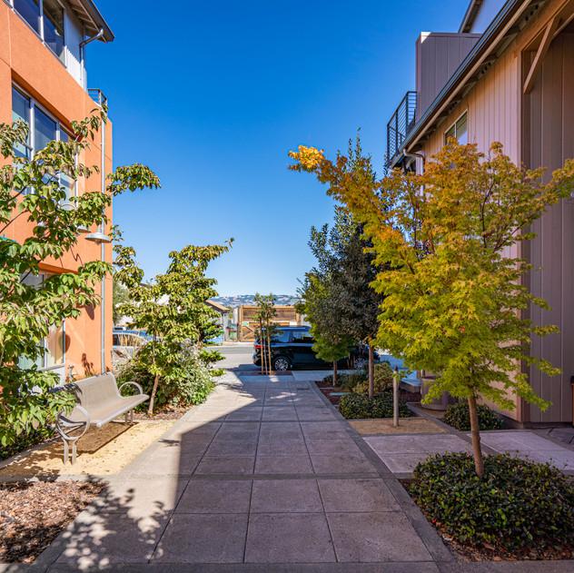 Courtyard looking East.jpg