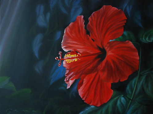 Hibiscus  Huile sur bois, 11x14 po.
