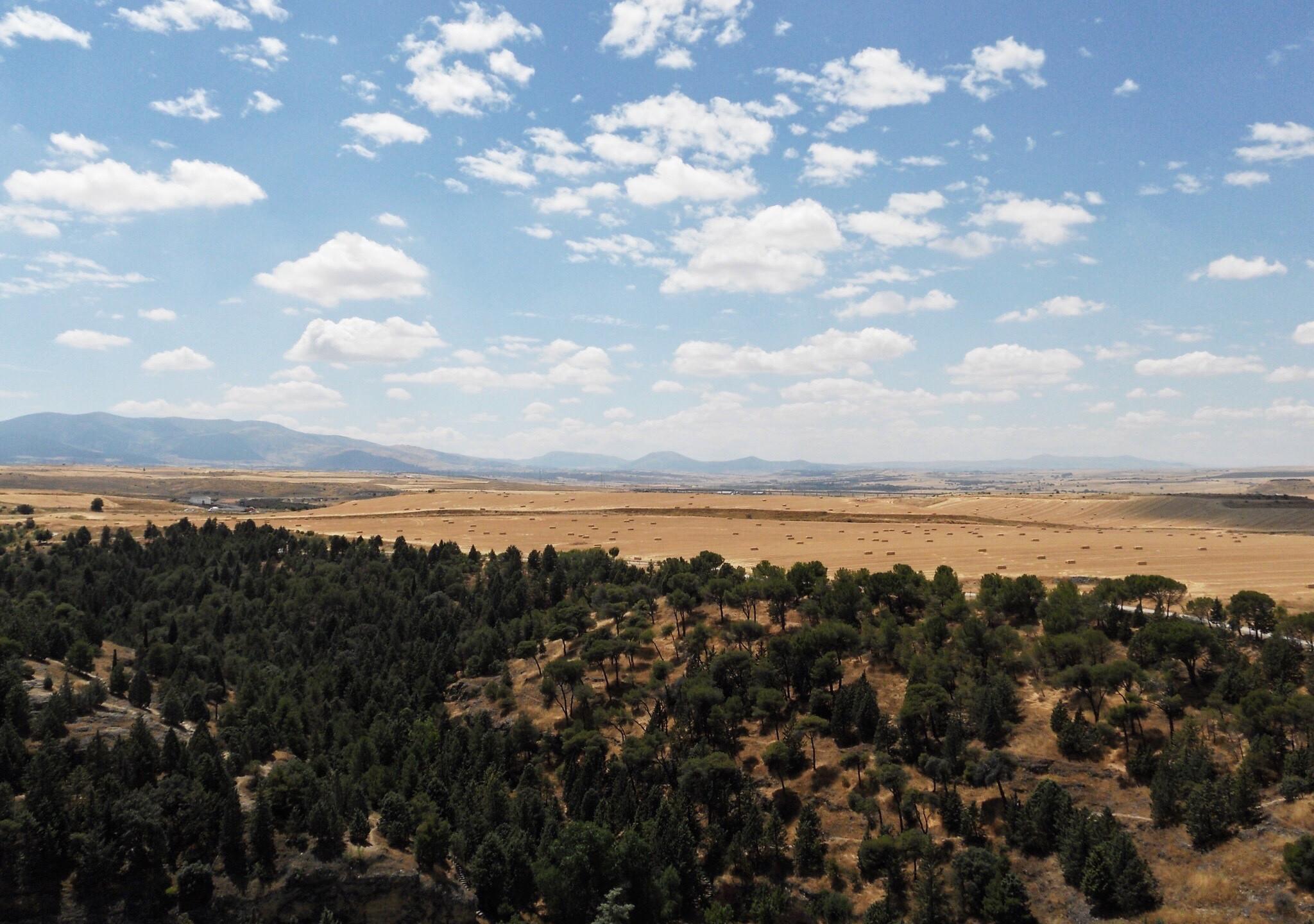 Castilian Plains