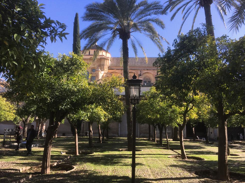 A Day in Cordoba, Spain