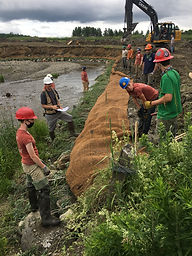 laying the coir fabric (17).JPG