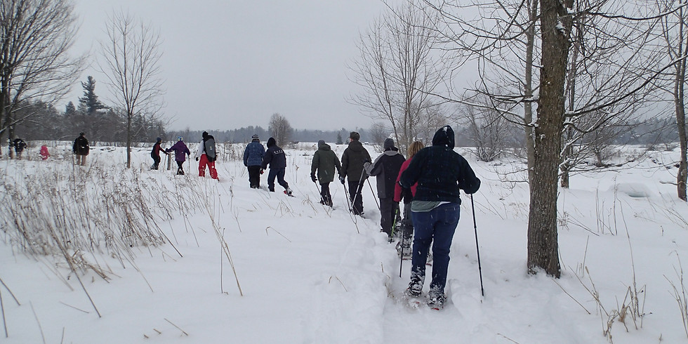 Guided Snowshoe Tour (Franklin Co.)