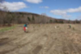mercy farm tree planting0003.JPG