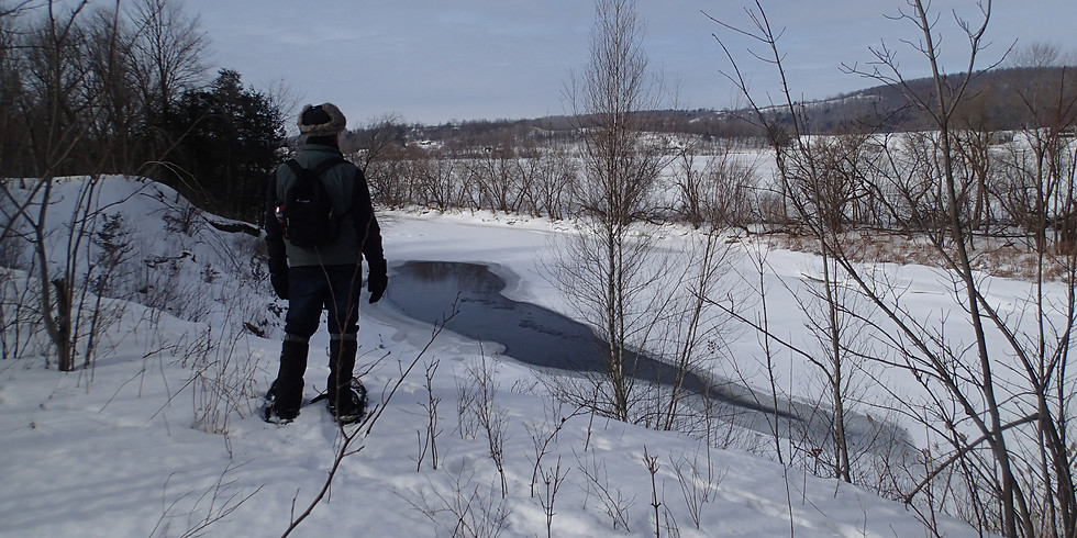 Snowshoe Tour in Troy