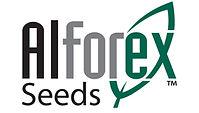 Alforex seed logo