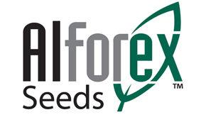 Alforex Seeds