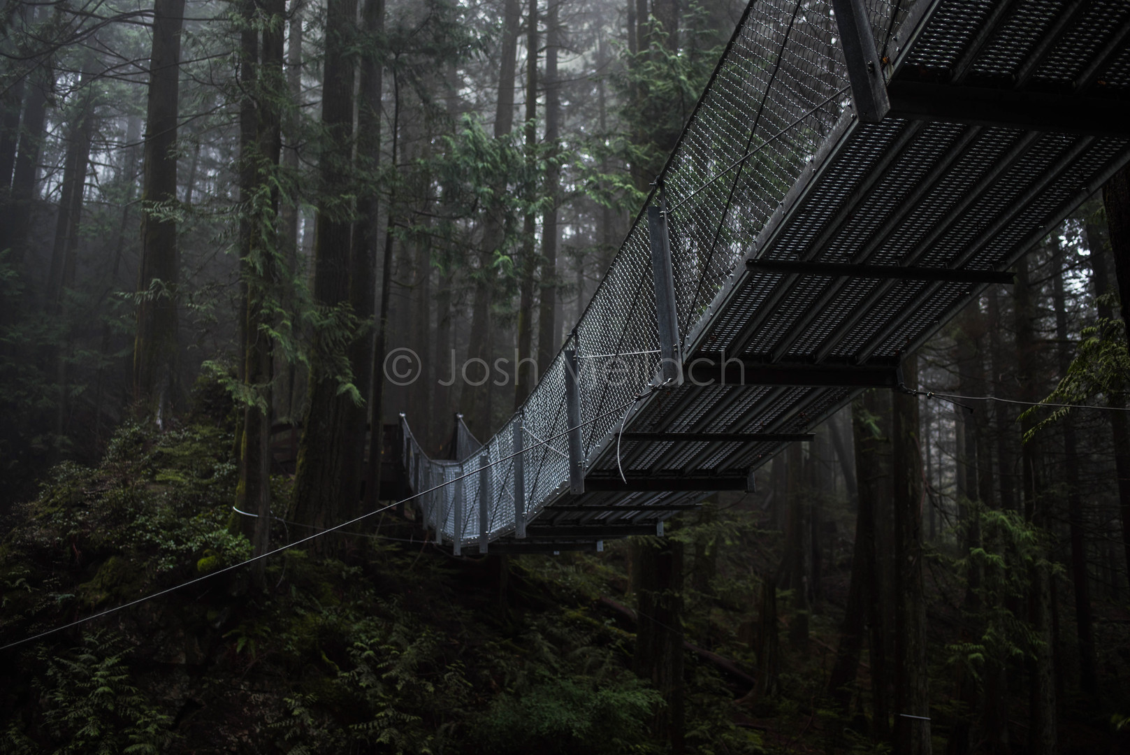 Cascade Suspenion Bridge