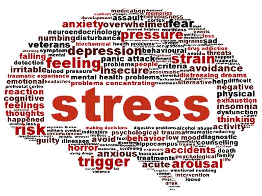Professional Stress Management Techniques
