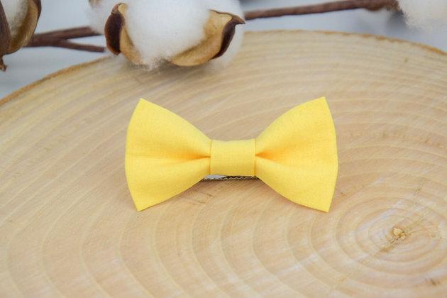 Noeud Citron