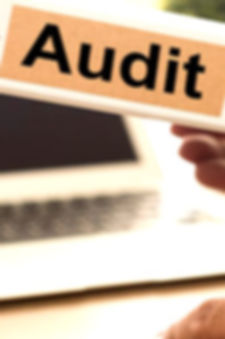 Information_Technology_Audit_edited.jpg
