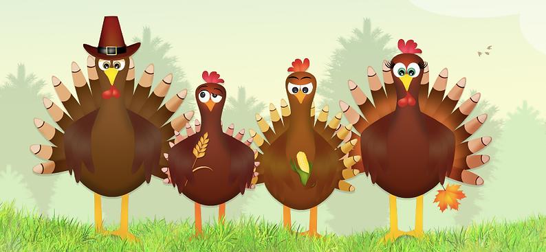 turkeys.png