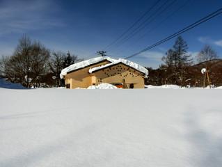こびっとハウスが雪に埋もれるまで