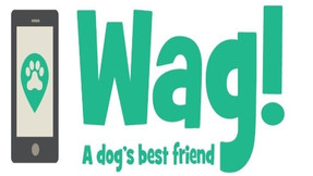 What is Wag! Health? How does it work?