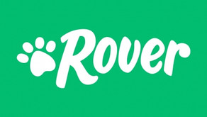 Rover(Everything you need to know)