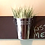 Thumbnail: Indoor Wall Planter- Horizontal Mount