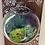 Thumbnail: Wall Bubble Vase Terrarium