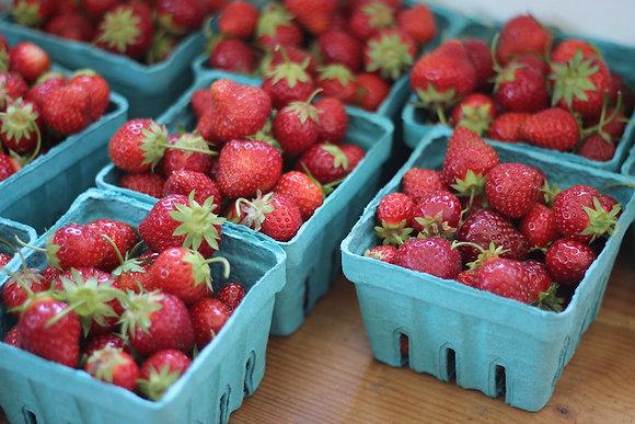Strawberry Flats 8lb