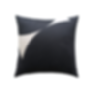 cushion 2 .png