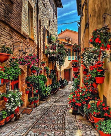 Streets of Spello.jpg