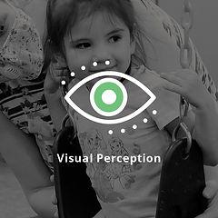 Visual Perception.jpg