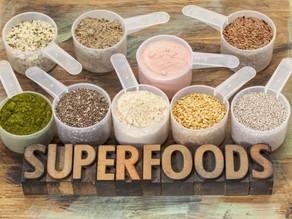 Superfood für den Hund