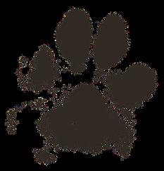 dog-paw-2263833_960_720.png