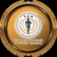 benfatto-ppm-training-academy-gold-messa