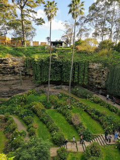 Umpherston sinkhole gardens
