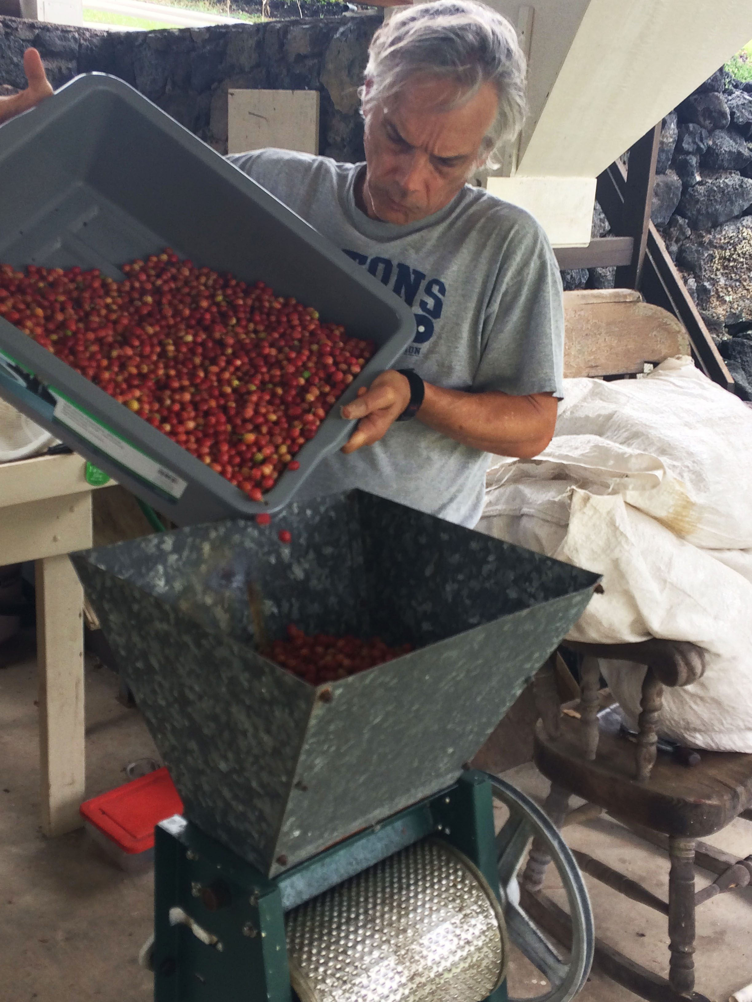 Into the pulping machine