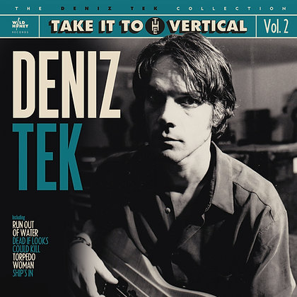 Vinyl LP - Take It To The Vertical