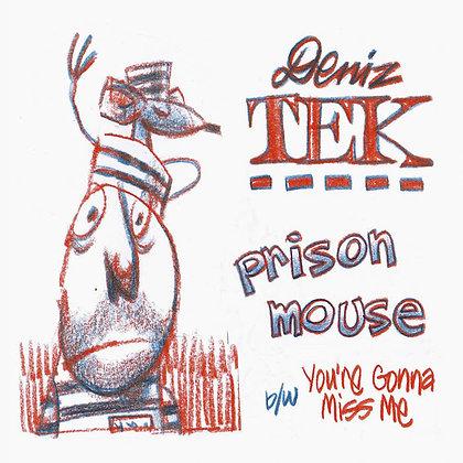 """Vinyl 7"""" - PRISON MOUSE"""