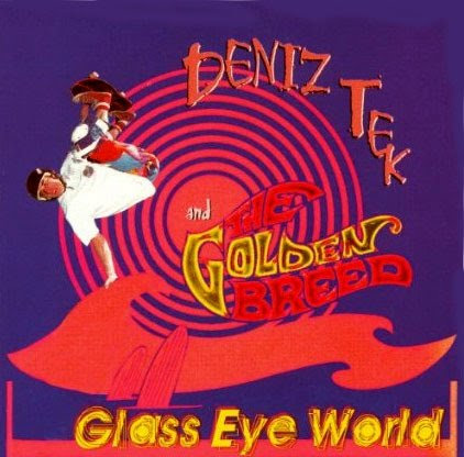CD - DENIZ TEK - GLASS EYE WORLD