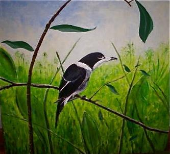 John's bird