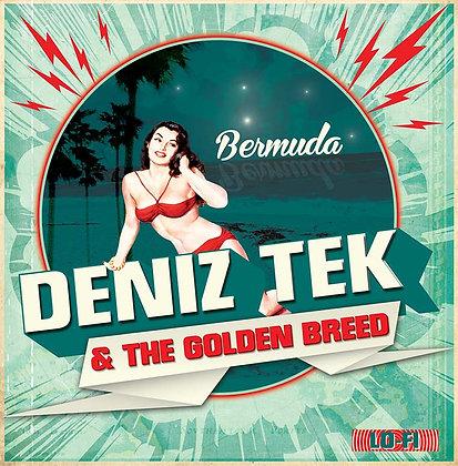 Vinyl 7''- BERMUDA